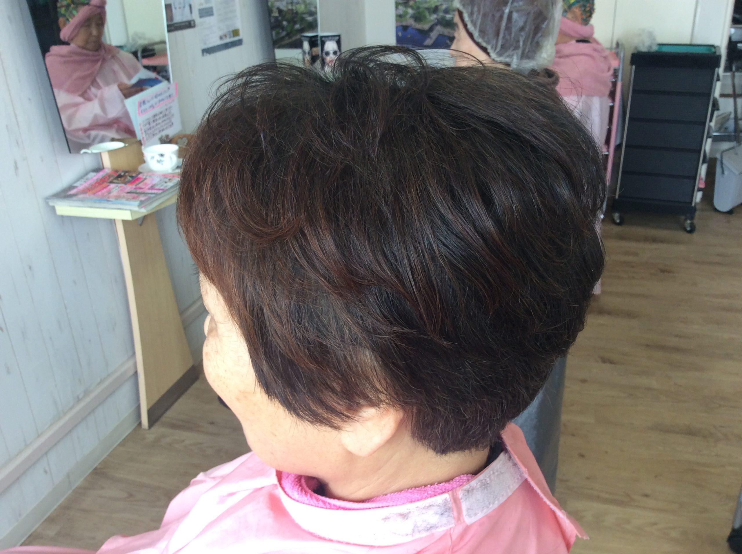 髪の悩みから解放されたノンジアミンカラー